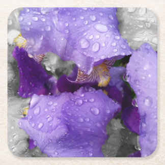 raindrops on iris square paper coaster