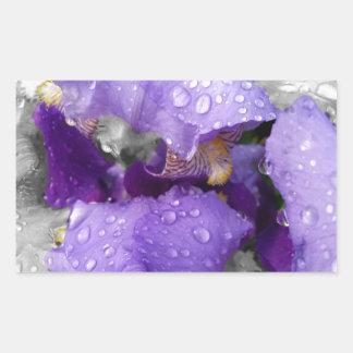 raindrops on iris sticker