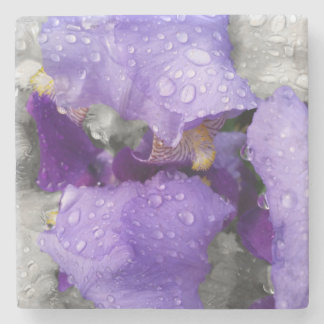 raindrops on iris stone coaster