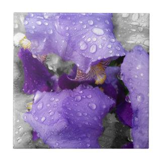 raindrops on iris tile