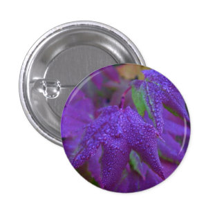 Raindrops on Purple Leaves 1 Inch Round Button