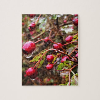 Raindrops On Rosehips Jigsaw Puzzle