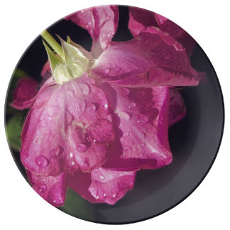 Raindrops on Roses Porcelain Plate