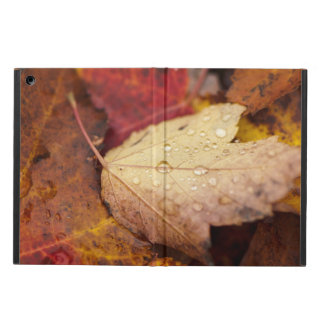 Raindrops on the October leaf Case For iPad Air