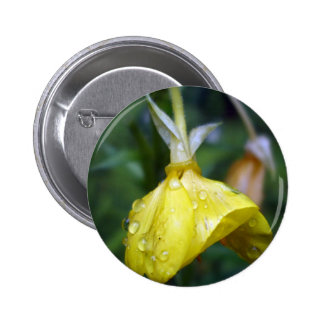 Raindrops on Yellow Tulip 2 Inch Round Button