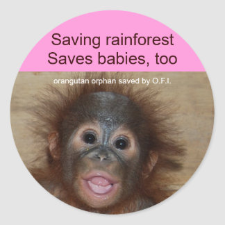 Rainforest Baby Orangutan Classic Round Sticker