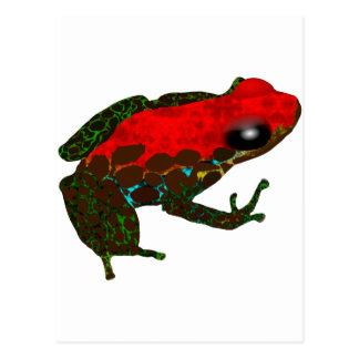 Rainforest Dart Frog Postcard
