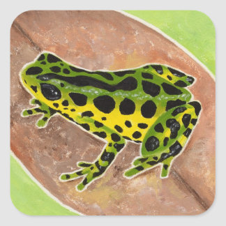 Rainforest Frog Square Sticker