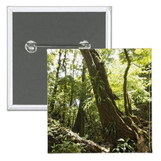 rainforest view, Dominica 2 Inch Square Button