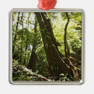 rainforest view, Dominica Silver-Colored Square Ornament