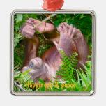 Rainforest Yoga Happy Baby