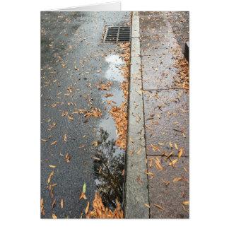 Rainwashed Reflection, card