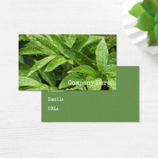 Rainwater Drenched Green Foliage Outdoor Business Card