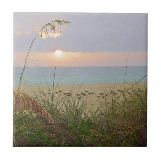 Rainy Beach Sunset Tile