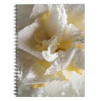 Rainy Day Daffodil Notebook