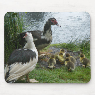 Rainy Day Duck family Mouse Pad