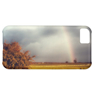 Rainy Day Rainbow iPhone 5C Cases