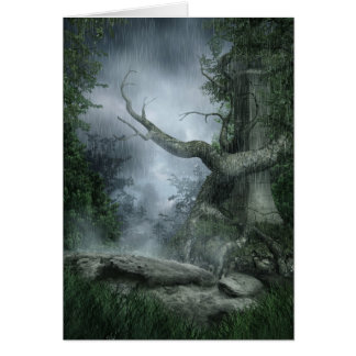 Rainy Forest Greeting Card