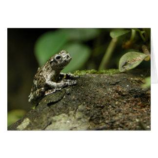Rainy Frog Card