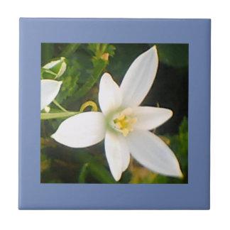 Rainy Spring White Flowering Ceramic Tile