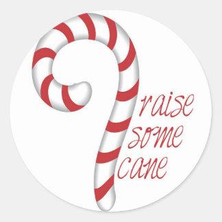 Raise Some Cane Classic Round Sticker