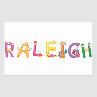 Raleigh Sticker