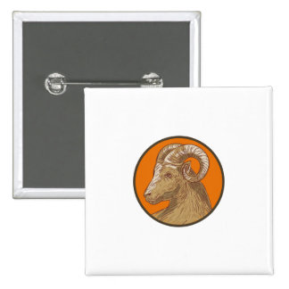 Ram Goat Head Circle Drawing 2 Inch Square Button