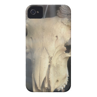 ram skull cool iPhone 4 Case-Mate cases