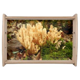 Ramaria stricta Fungi Serving Tray