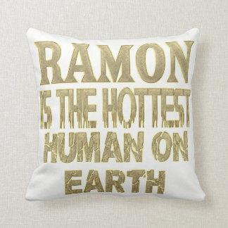 Ramon Pillow