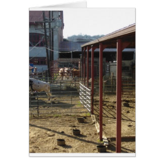 Ranch Card