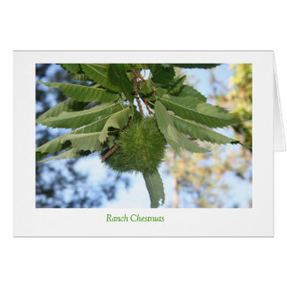 Ranch Chestnuts Card