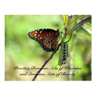 Random Act of Kindess Postcard - Queen Butterfly