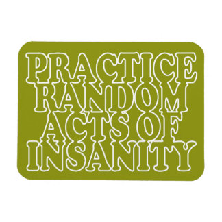 Random Acts of Insanity custom magnet