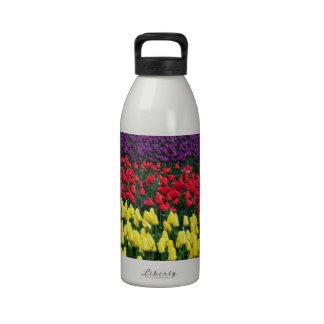 Rangées colorées des tulipes de ressort bouteille d'eau