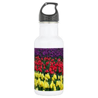 Rangées colorées des tulipes de ressort