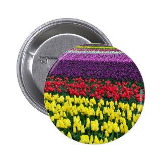 Rangées colorées des tulipes de ressort badge avec épingle