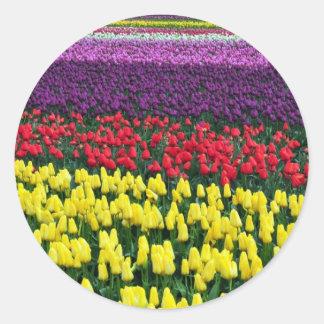 Rangées colorées des tulipes de ressort sticker rond