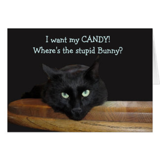 "Ranger ""Where's The Stupid Bunny"" Easter Card"