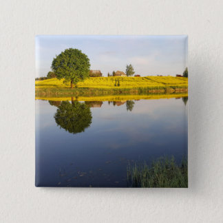 Rapeseed field 2 inch square button