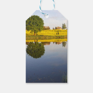Rapeseed field gift tags