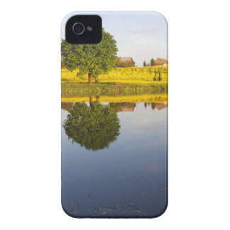 Rapeseed field iPhone 4 cases