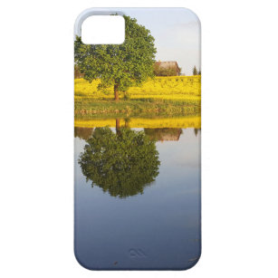 Rapeseed field iPhone 5 case