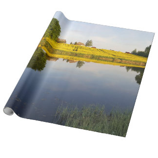 Rapeseed field wrapping paper
