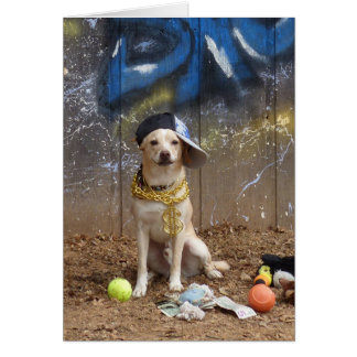 """Rapper Dog - """"Lil Sneezy"""" Card"""