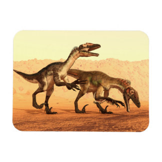 Raptor Dinosaurs in the Desert Magnet