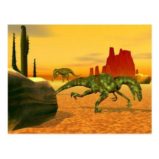 Raptors Postcard