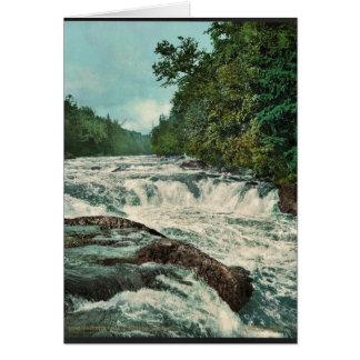 Raquette Falls, Adirondack Mountains rare Photochr Card