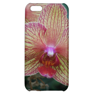 Rare Orchids iPhone 5C Cover
