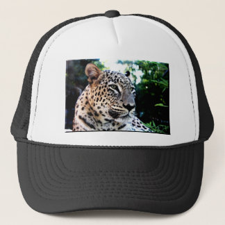 Rare Persian Leopard Trucker Hat